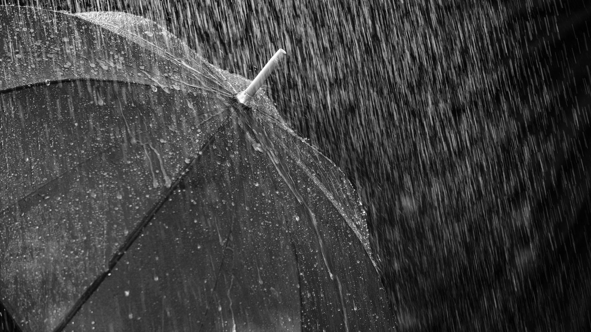 Hình nền HD cho máy tính mưa rơi trên chiếc ô
