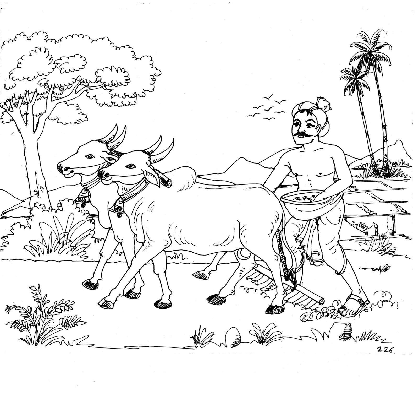 Tranh tô màu bác nông dân chăn trâu