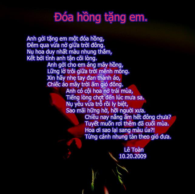 Hình ảnh bài thơ Đóa hồng tặng em