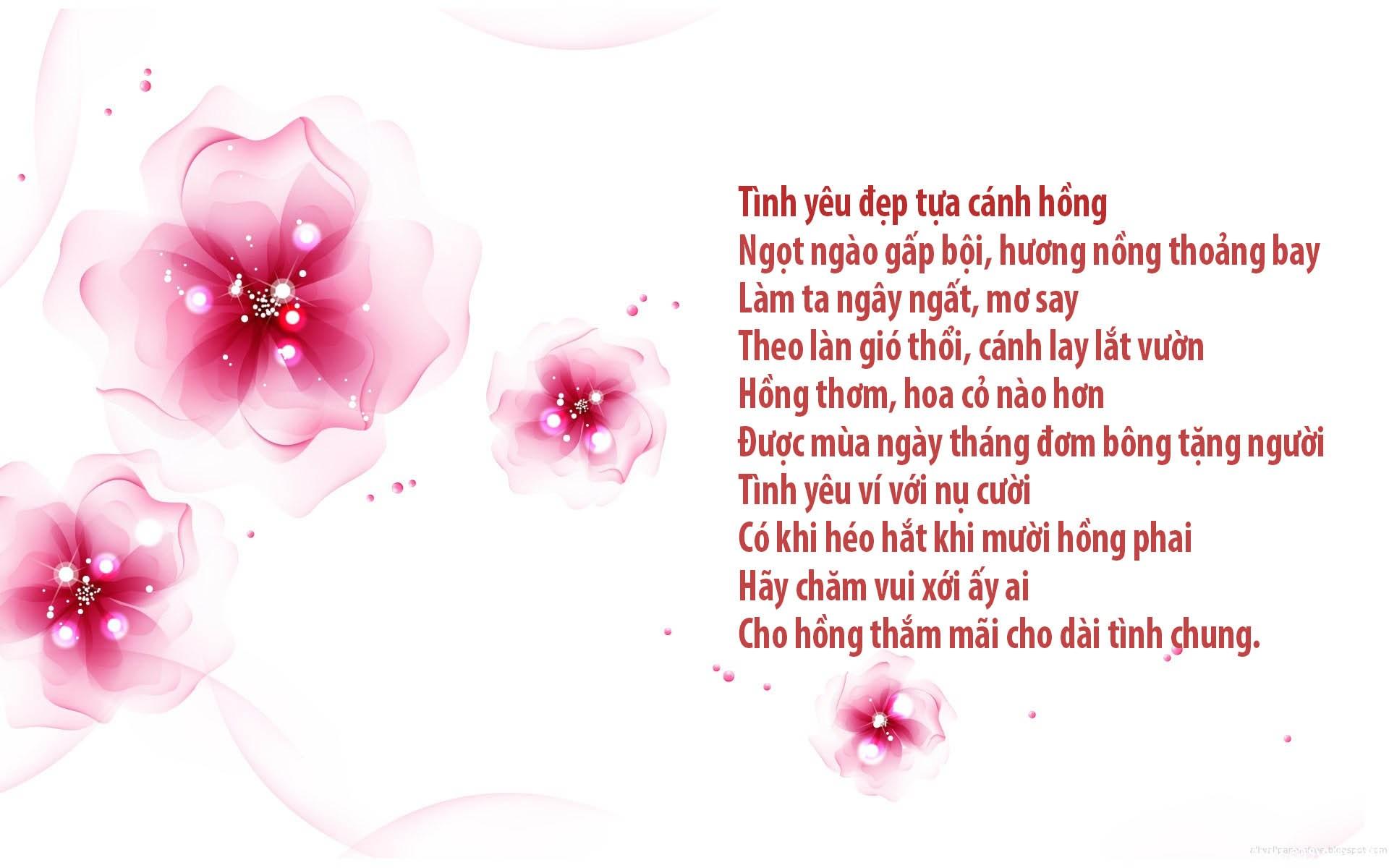 Hình ảnh bài thơ Tình yêu đẹp tựa cánh hồng