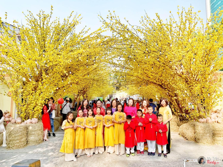 Hình ảnh con đường hoa mai vàng cực đẹp