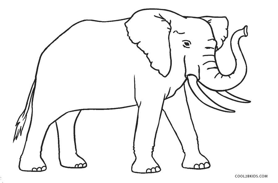 Tranh tô màu chú voi rất đẹp