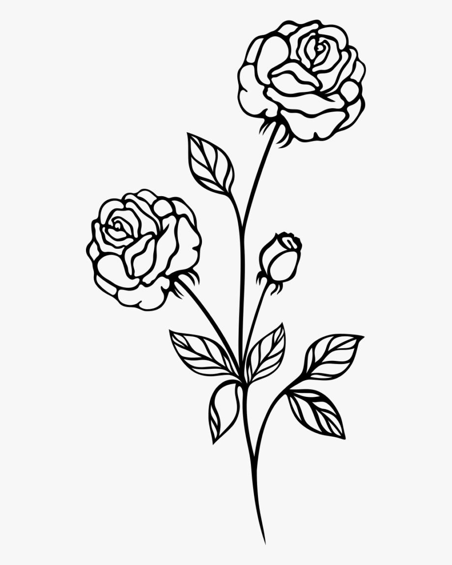 Tranh tô màu hoa hồng đơn giản
