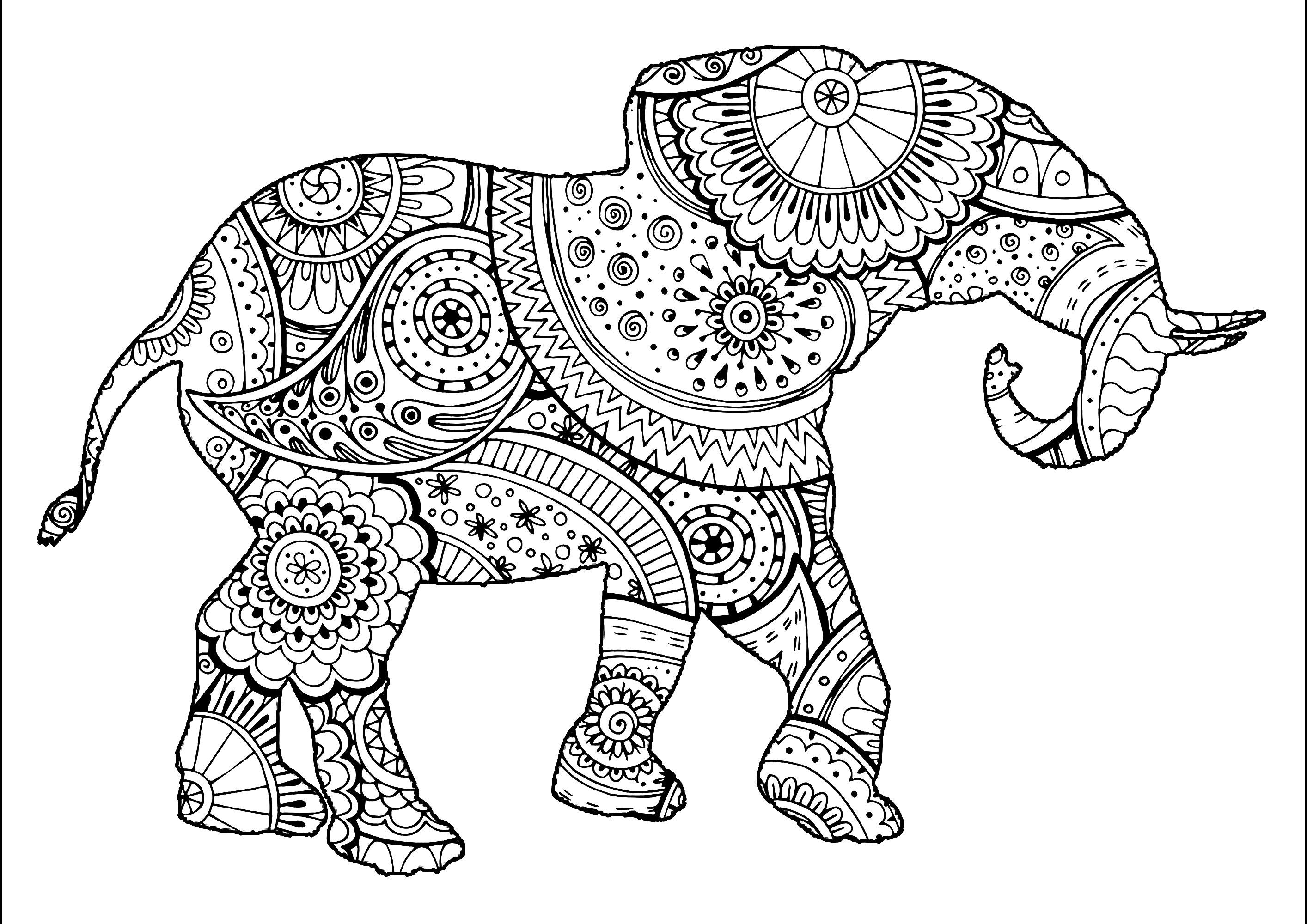 Tranh tô màu họa tiết hoa văn chú voi rất đẹp