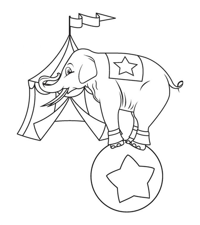 Tranh tô màu voi chơi đùa trên quà bóng