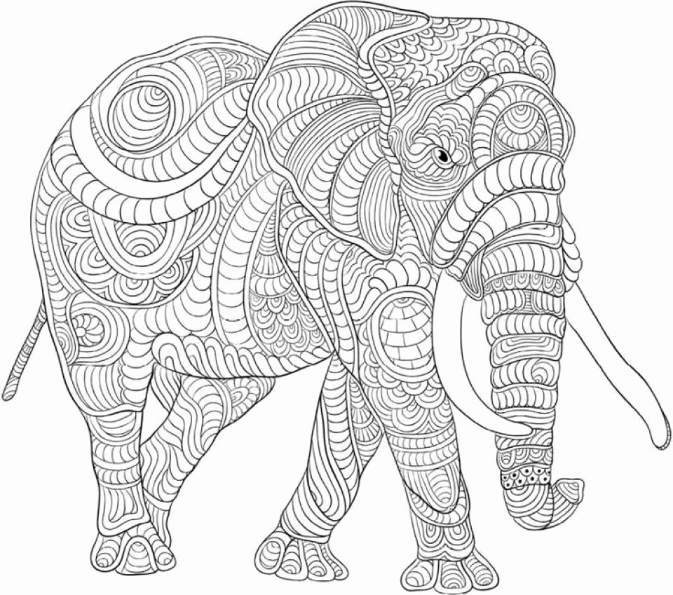 Tranh tô màu voi nhiều họa tiết phức tạp