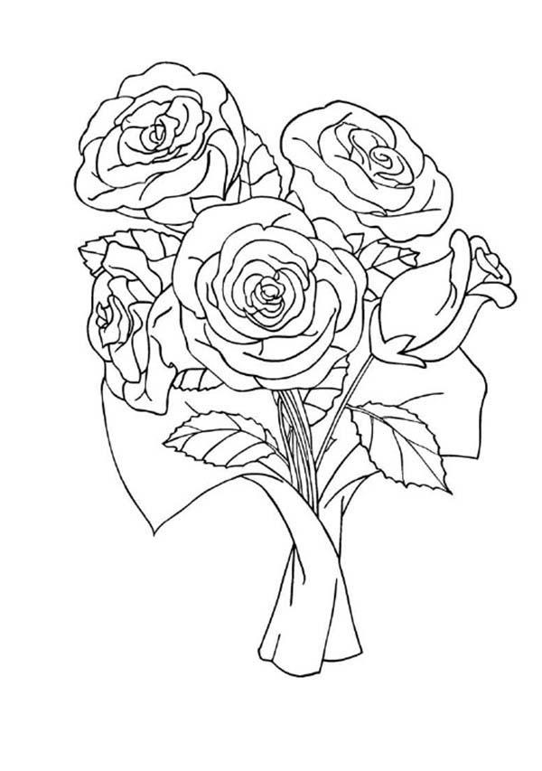 Tranh vẽ tô màu hoa hồng đẹp nhất
