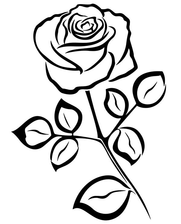 Tranh vẽ tô màu hoa hồng đơn giản đẹp nhất cho bé