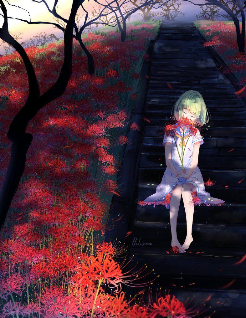 Ảnh hoa bỉ ngạn phim Anime