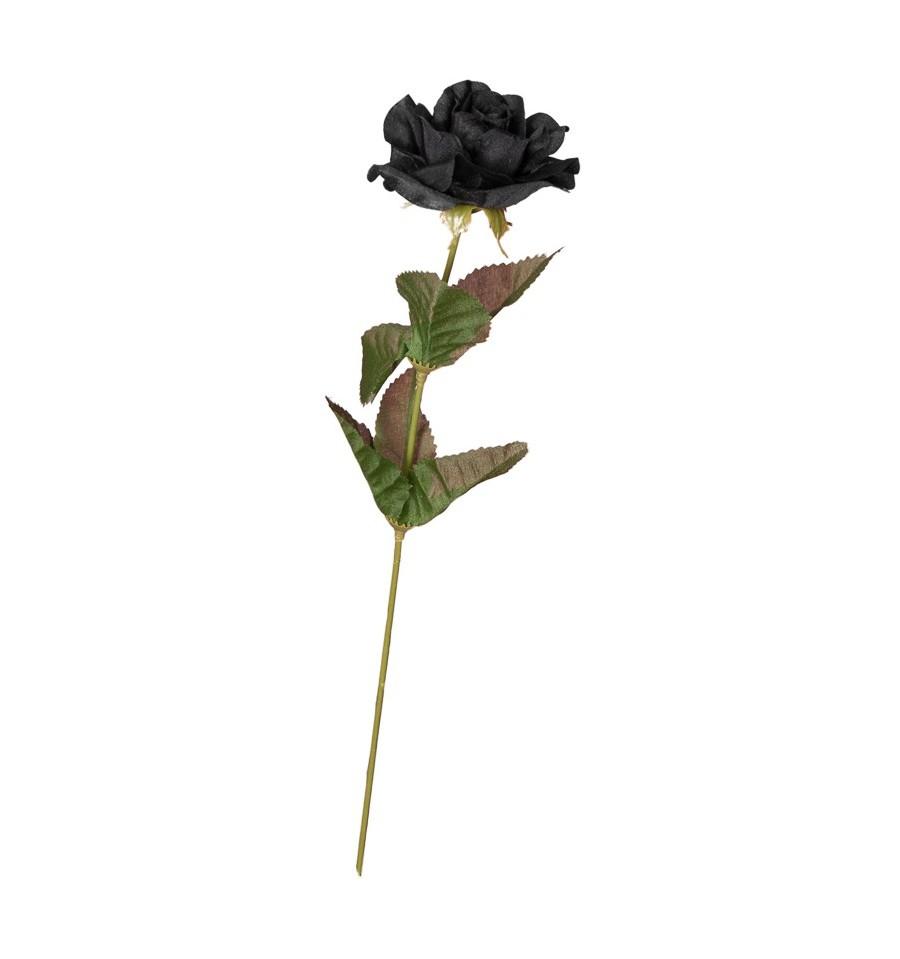 Cành hoa hồng đen bé xinh cực đẹp