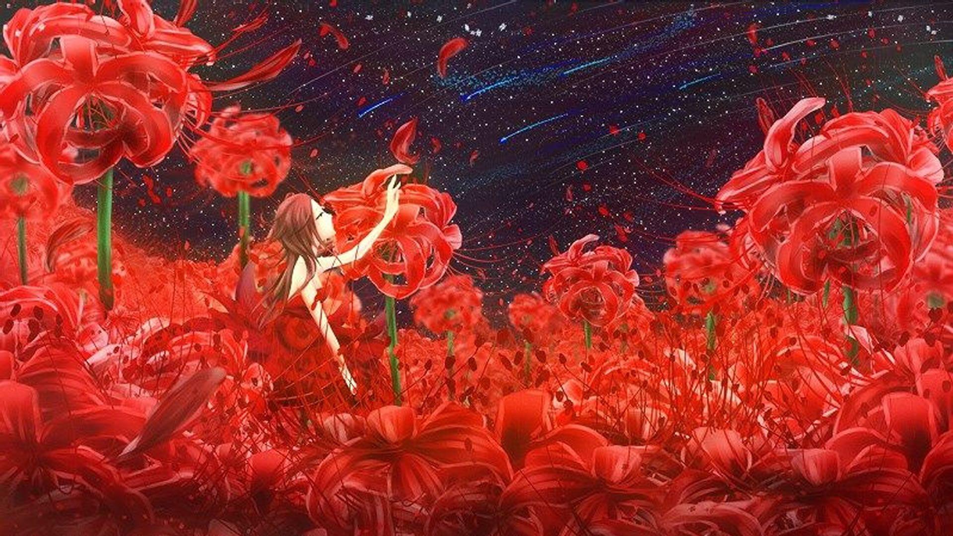 Hình ảnh hoa bỉ ngạn Anime đơn giản mà đẹp