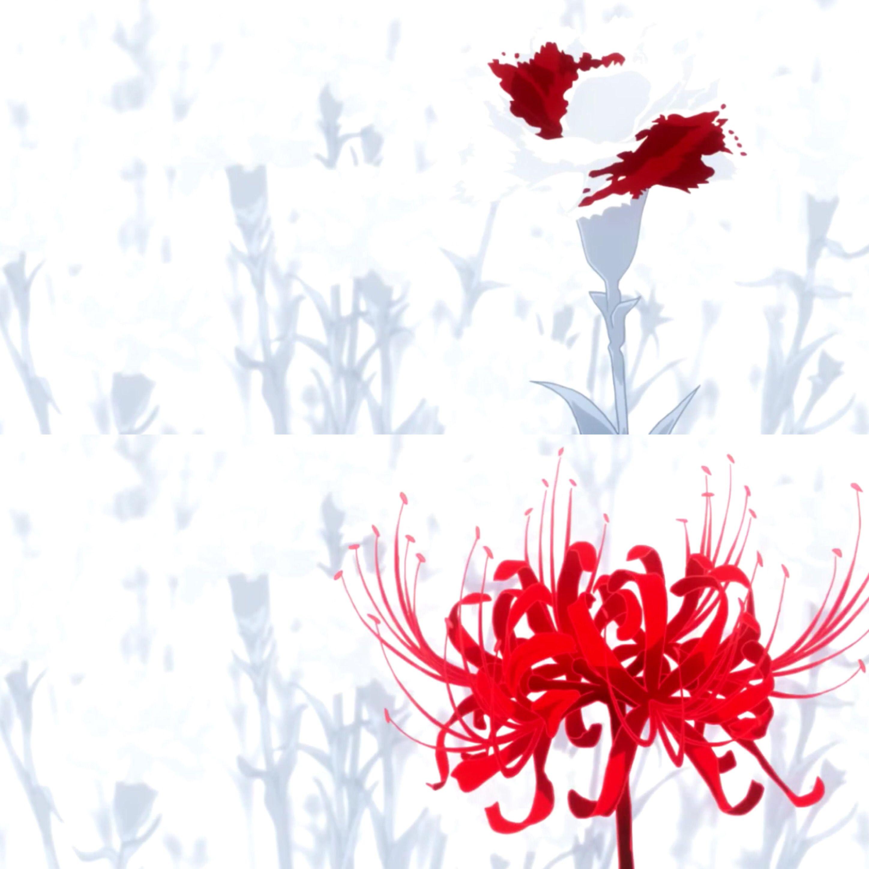 Hình ảnh hoa bỉ ngạn Anime đơn giản