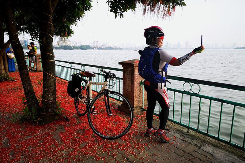 Hình ảnh hoa đỏ bên Hồ Tây