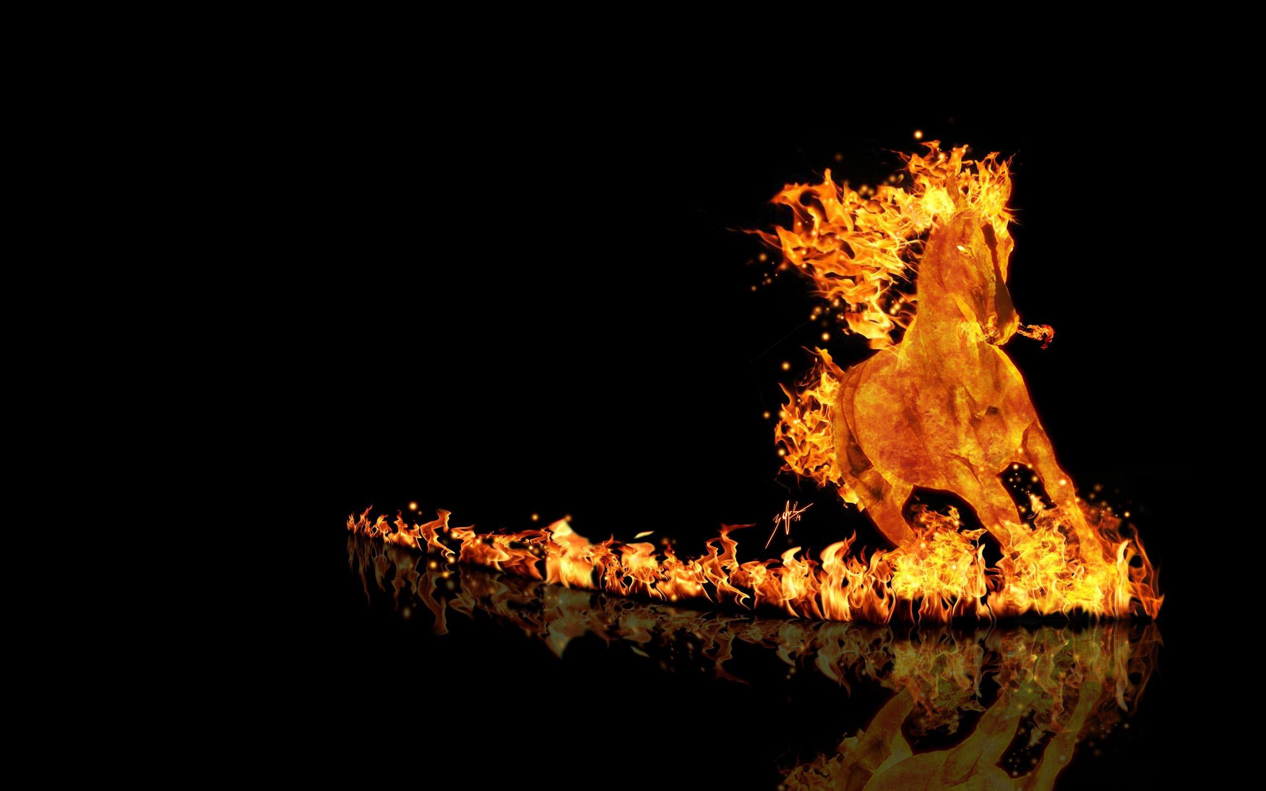 Hình ảnh ngọn lửa độc đáo