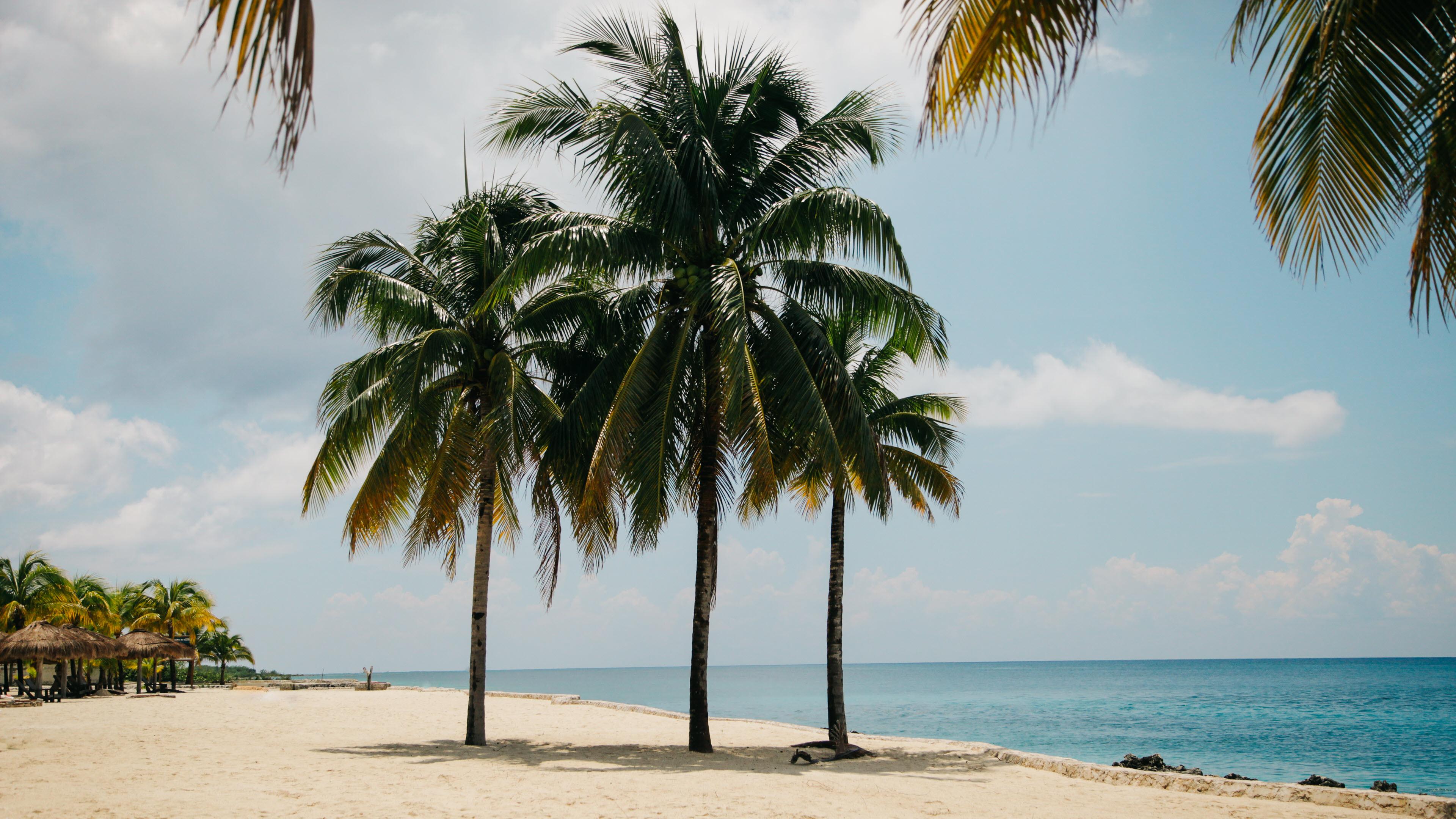 Ảnh nền bãi biển đẹp 4K