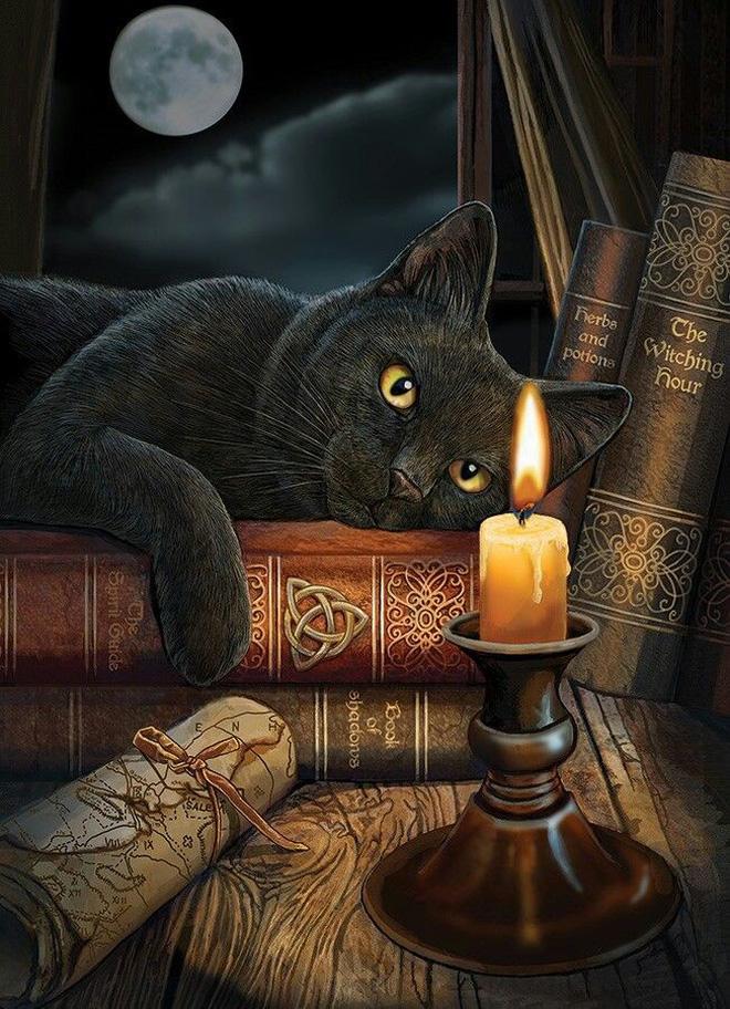Hình ảnh mèo đen 3D đẹp