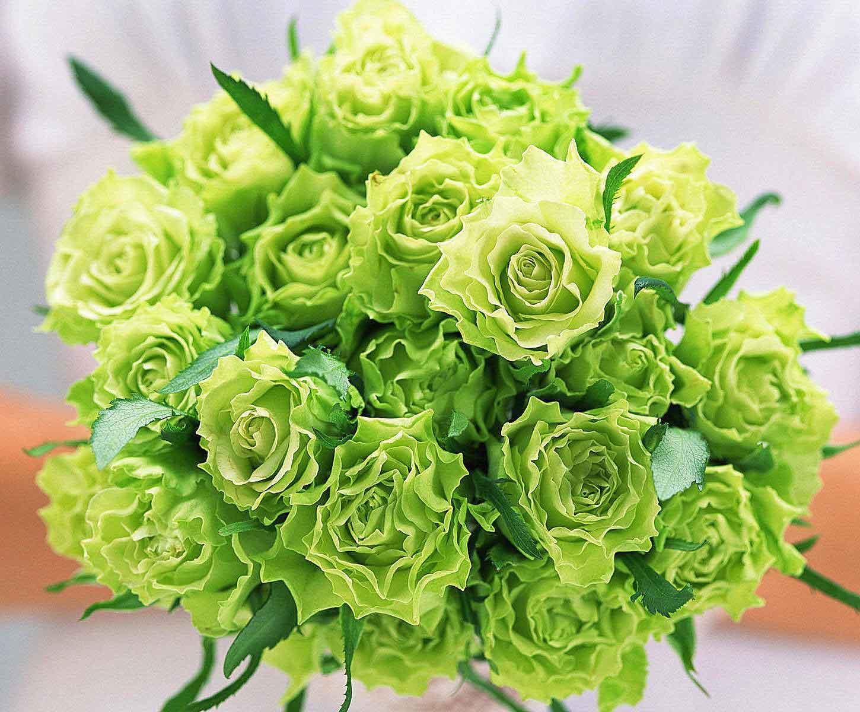 Bó hoa hồng xanh lá