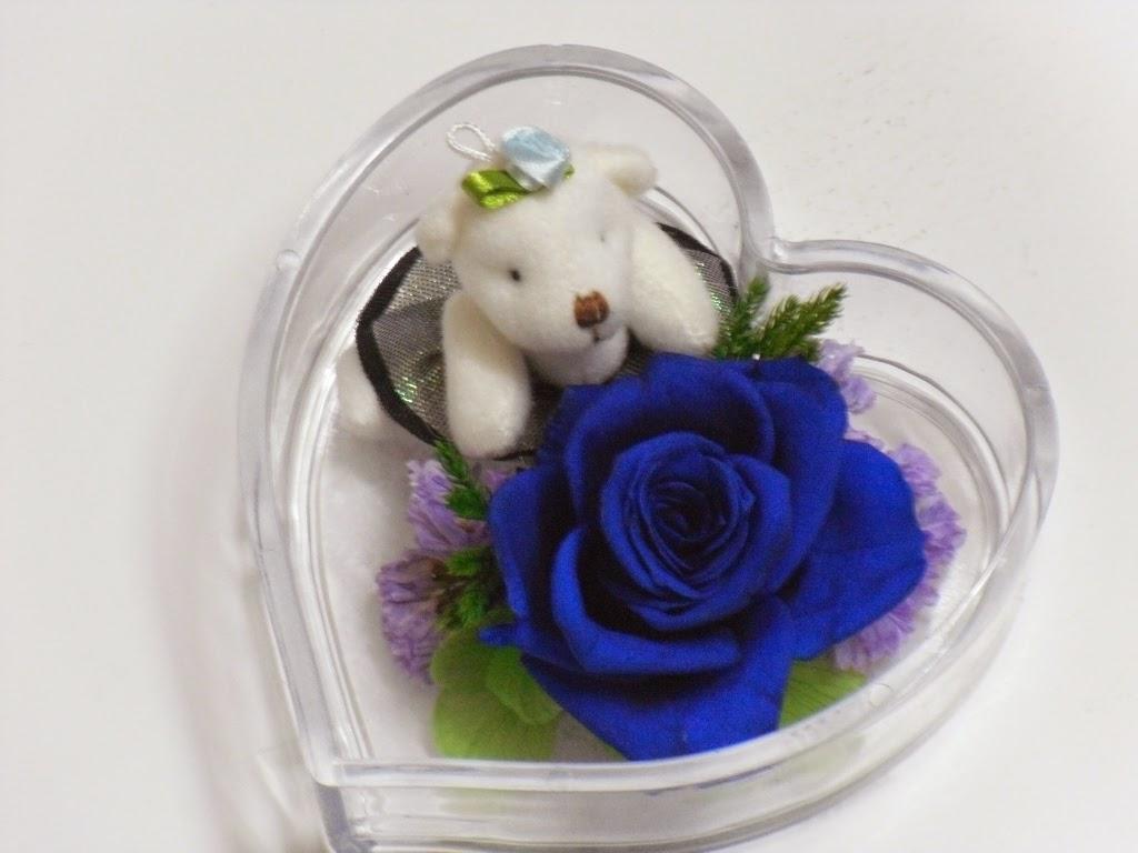 Bông hoa hồng xanh và gấu trắng đẹp
