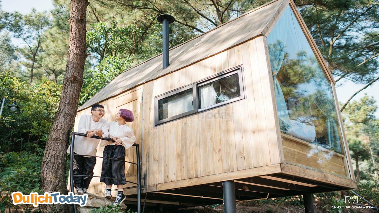 Du lịch cùng người yêu tới ngôi nhà trên cây