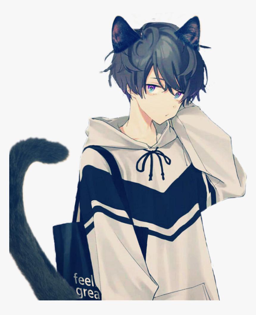 Hình ảnh cậu mèo tóc đen tóc uốn
