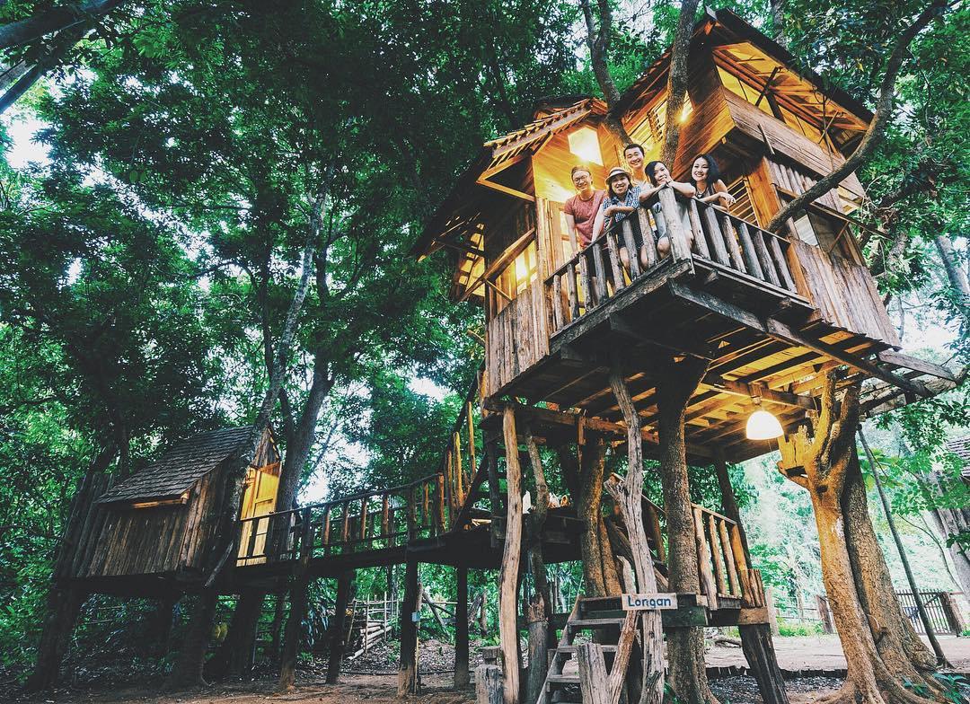 Hình ảnh hai nhà ở trên cây cực đẹp