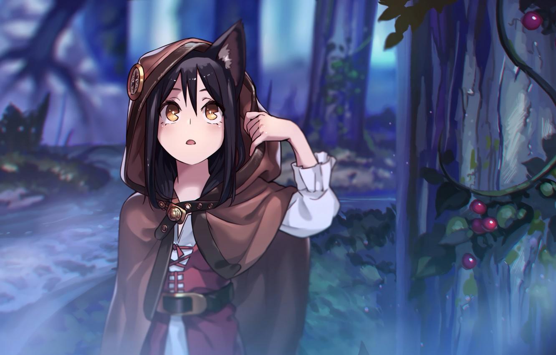 Hình ảnh mèo anime lạc trong rừng