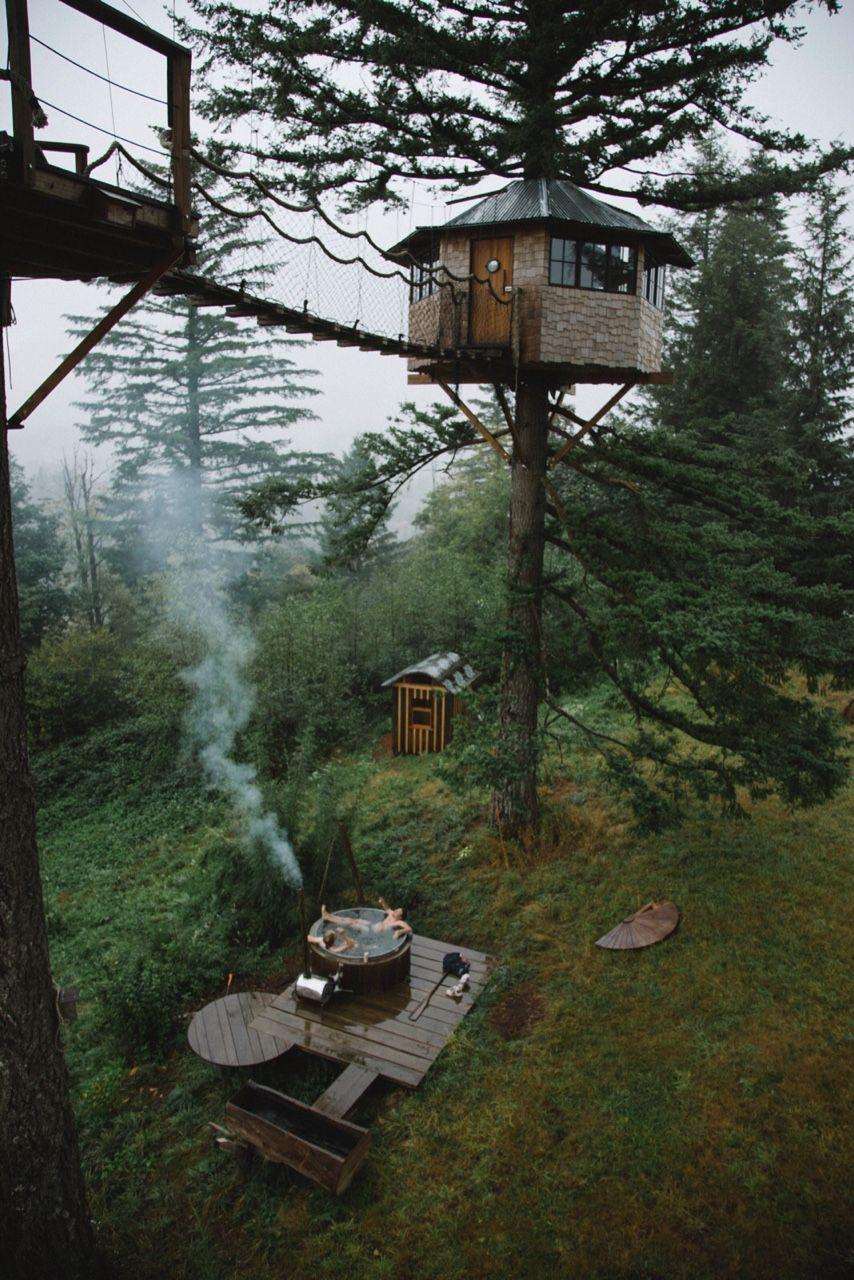 Hình ảnh ngôi nhà nhỏ xinh ở trên cây cực đẹp
