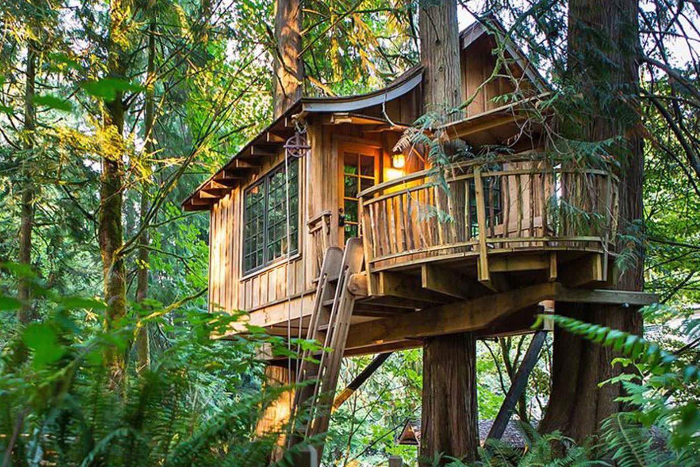 Hình ảnh ngôi nhà ở trên cây ấm cúng đẹp đẽ
