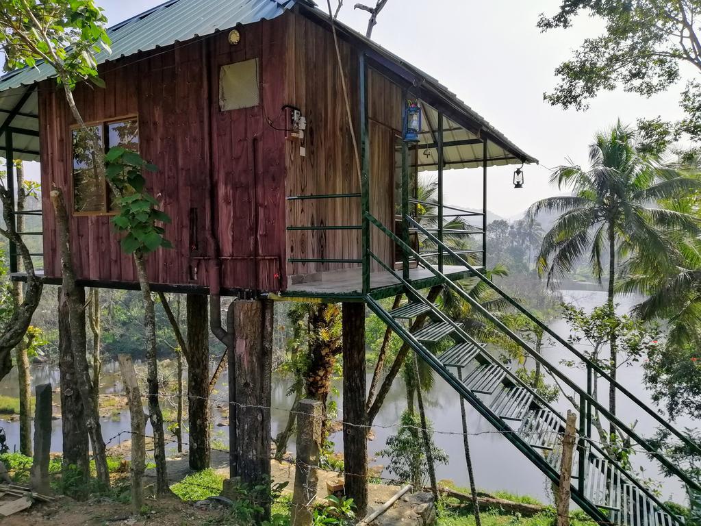 Hình ảnh nhà gỗ trên cây nhìn ra mặt hồ