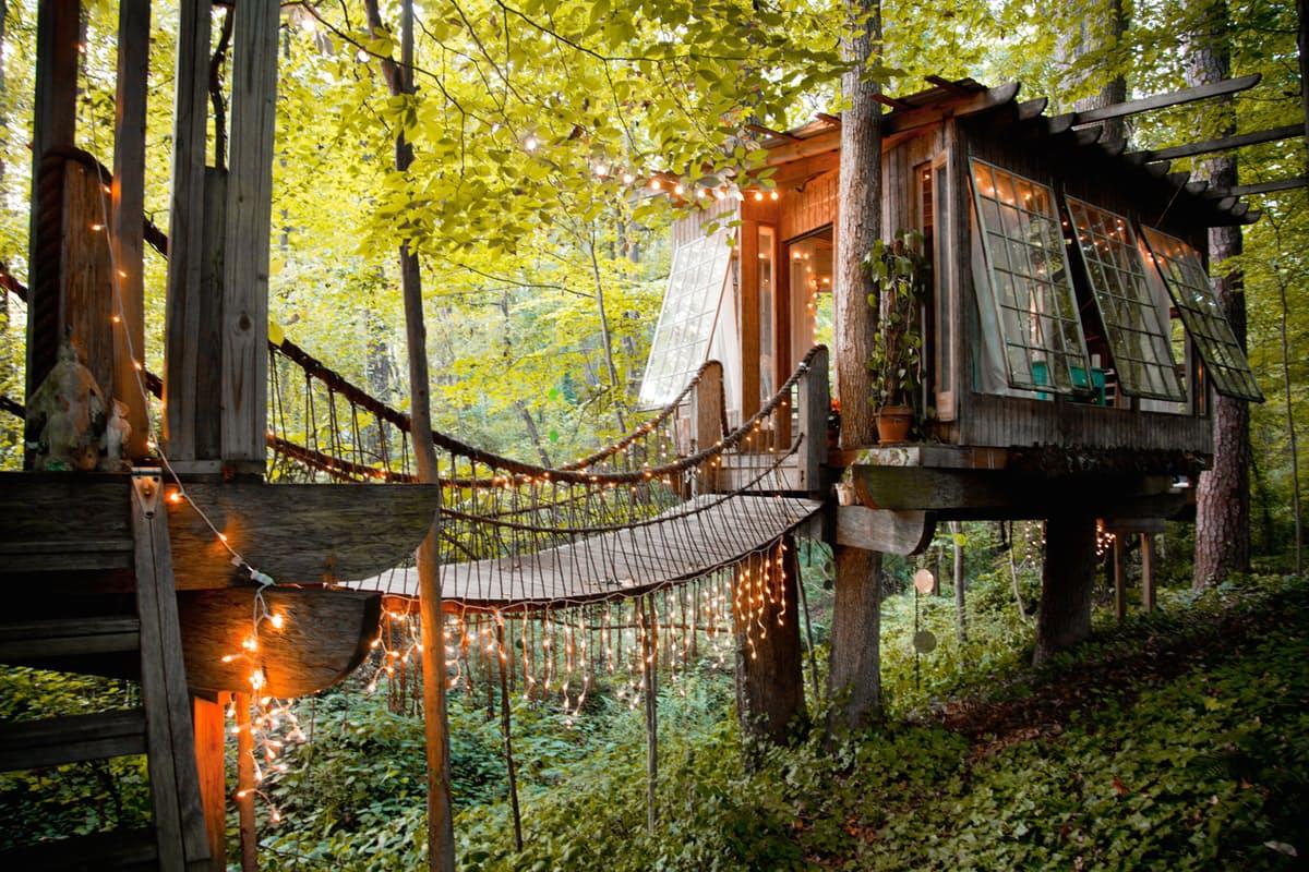 Hình ảnh nhà trên cây ấm cúng đơn giản