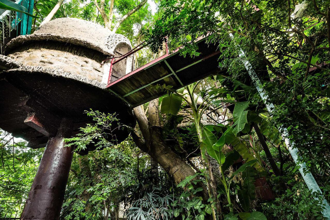 Hình ảnh nhà trên cây Sóc Sơn cực đẹp