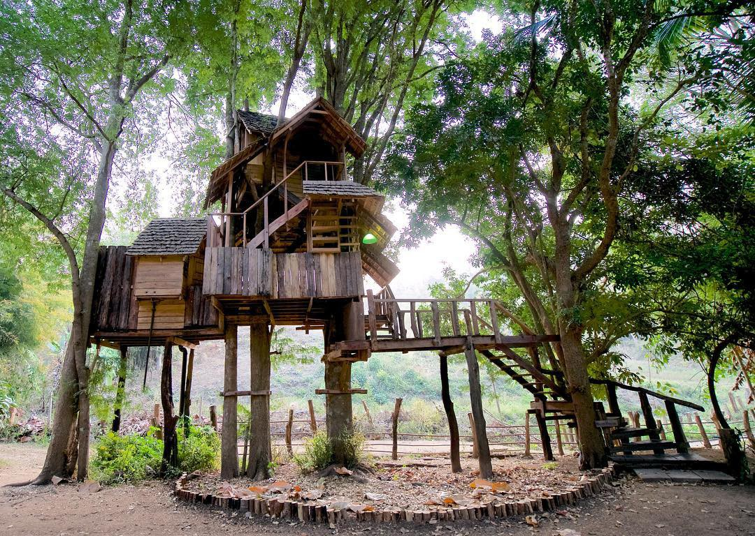 Hình ảnh nhà xây dựng trên trụ cây cực đẹp