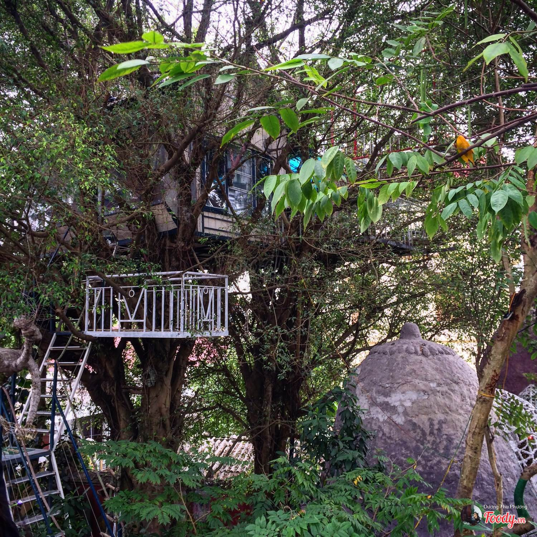 Hình ảnh nhà xây trên cây đẹp