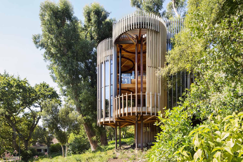 Hình ảnh nhà xây trên cây vừa đẹp vừa hiện đại