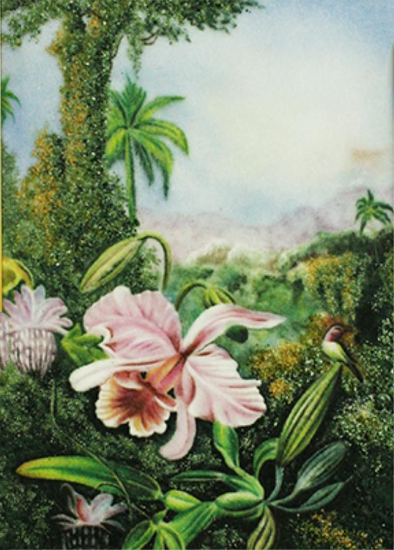 Hình ảnh tranh vẽ hoa lan đẹp