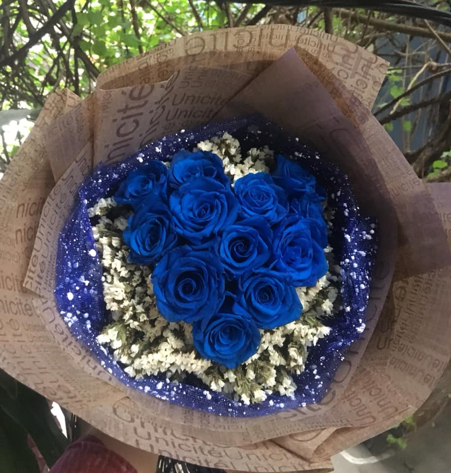 Mười hai bông hồng xanh trái tim tuyệt đẹp
