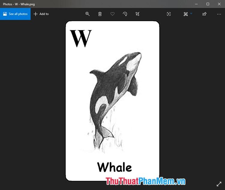 Hình ảnh Animal 4D cá voi