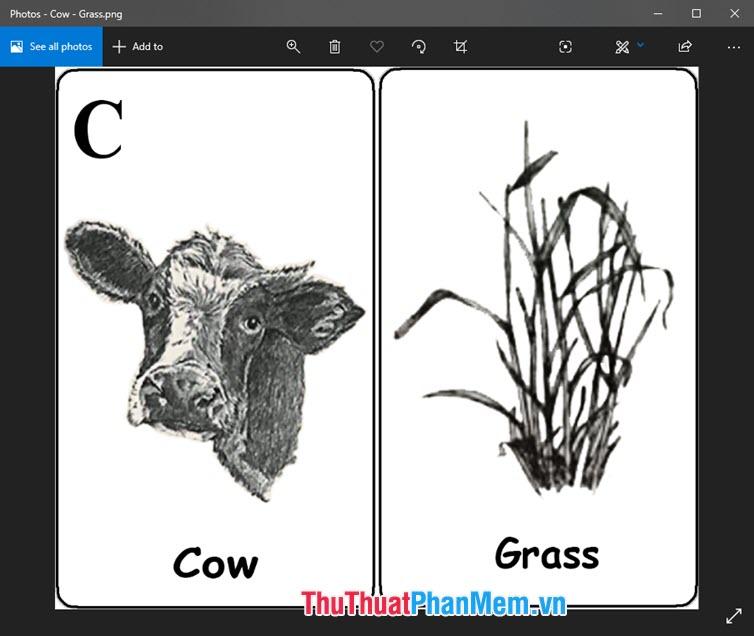 Hình ảnh Animal 4D con bò gặm cỏ