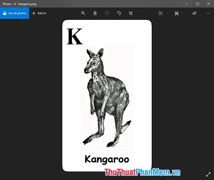 Hình ảnh Animal 4D Kangaroo dễ thương