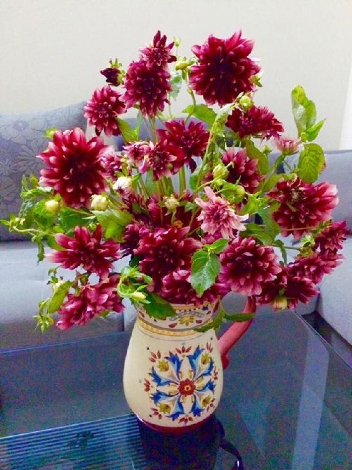 Lọ hoa thược dược trên mặt bàn
