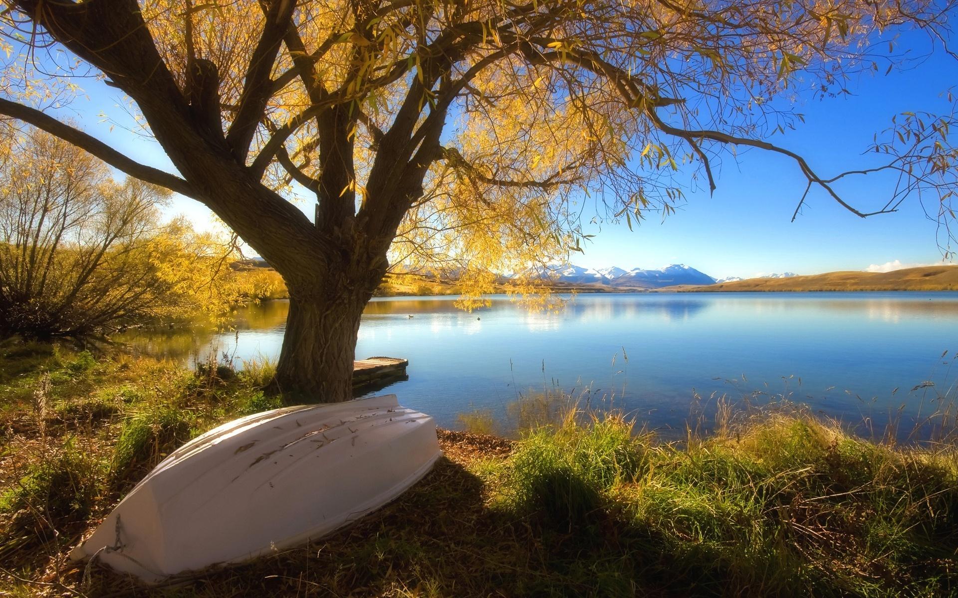 Hình nền phong cảnh đẹp bên bờ hồ