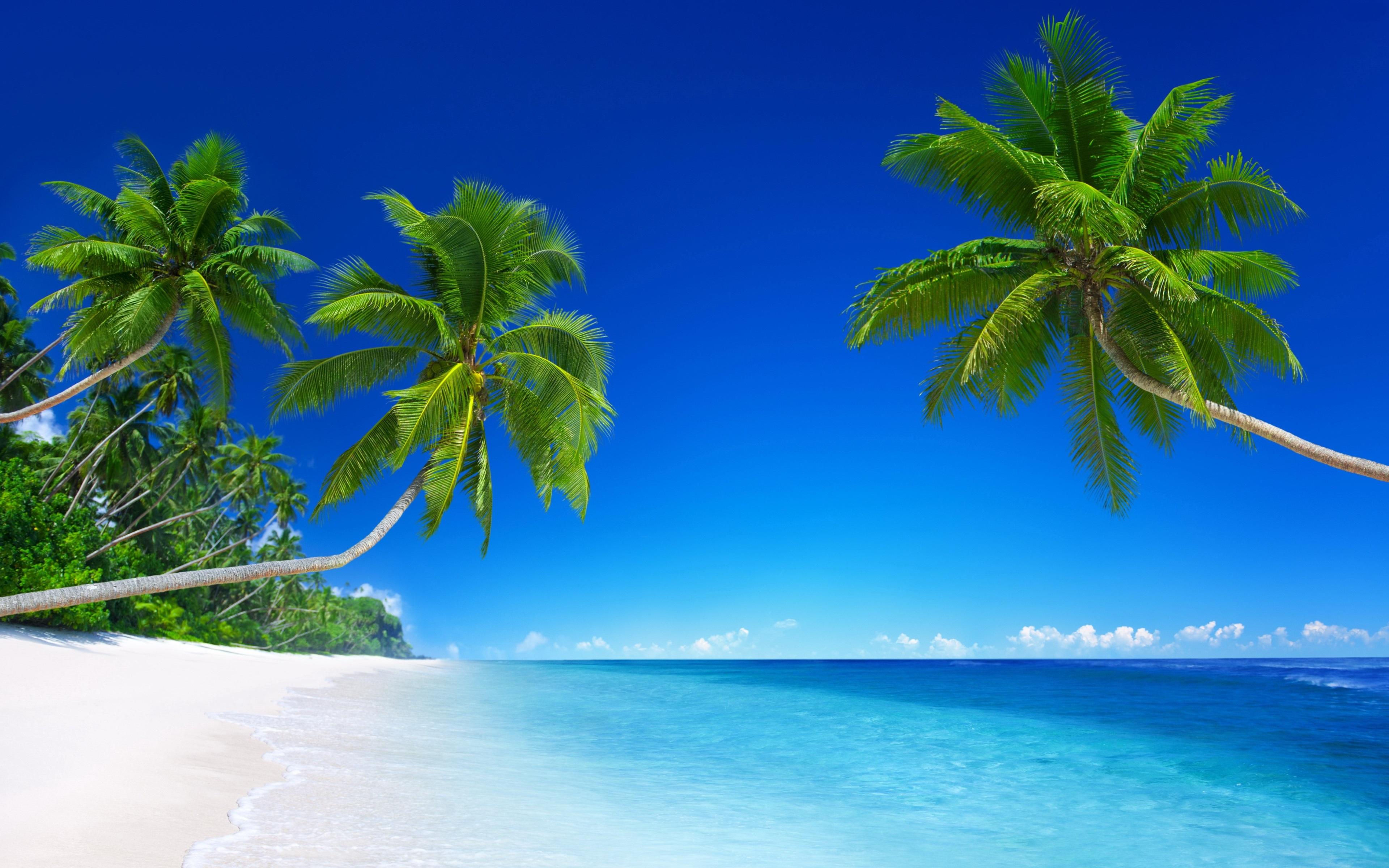 Ảnh nền desktop biển xanh