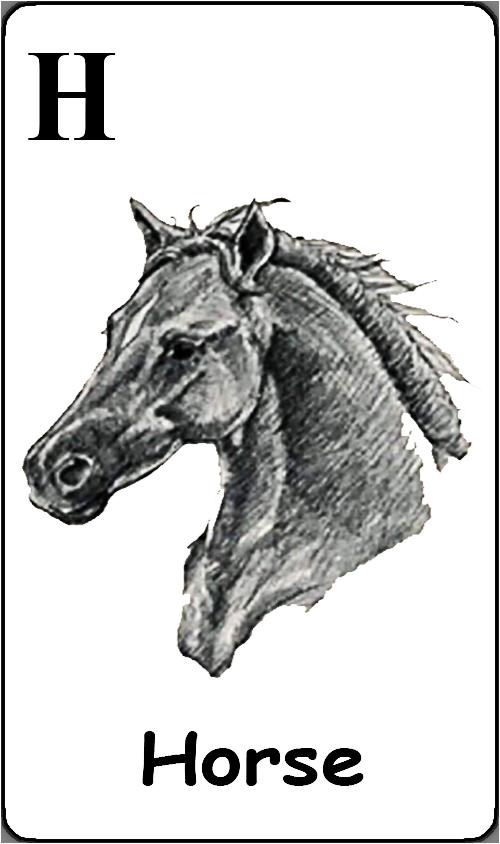 H - Horse