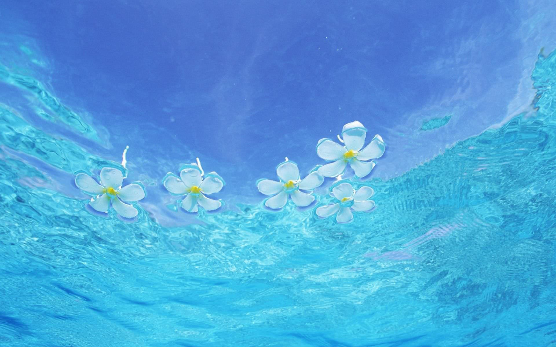 Hình nền nước xanh dương đẹp