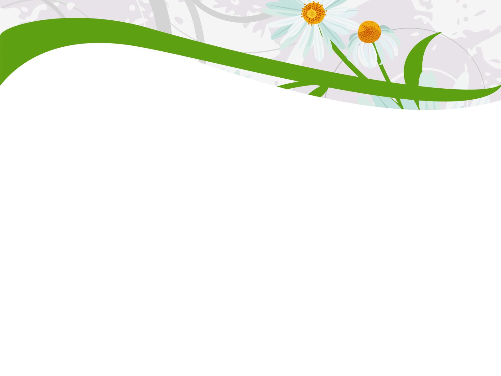 Hình nền Powerpoint hoa đẹp nhất 1
