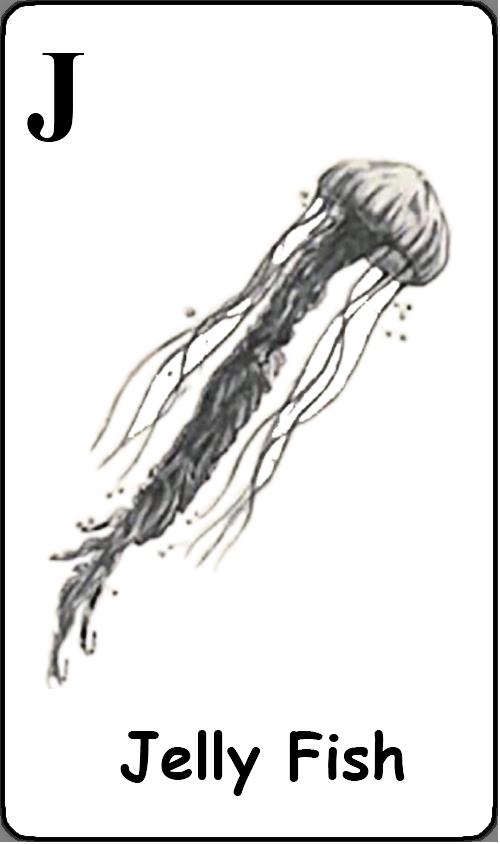 J - Jelly Fish