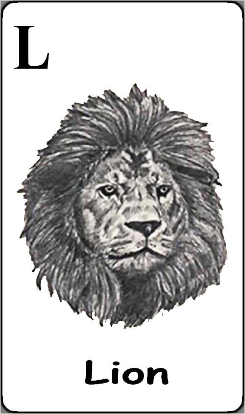L - Lion