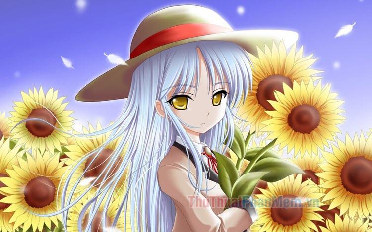 Anime hoa hướng dương đẹp