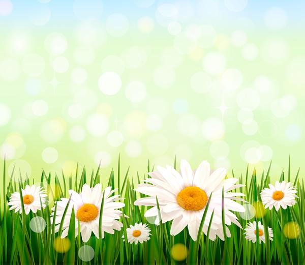 Background hoa lá cỏ