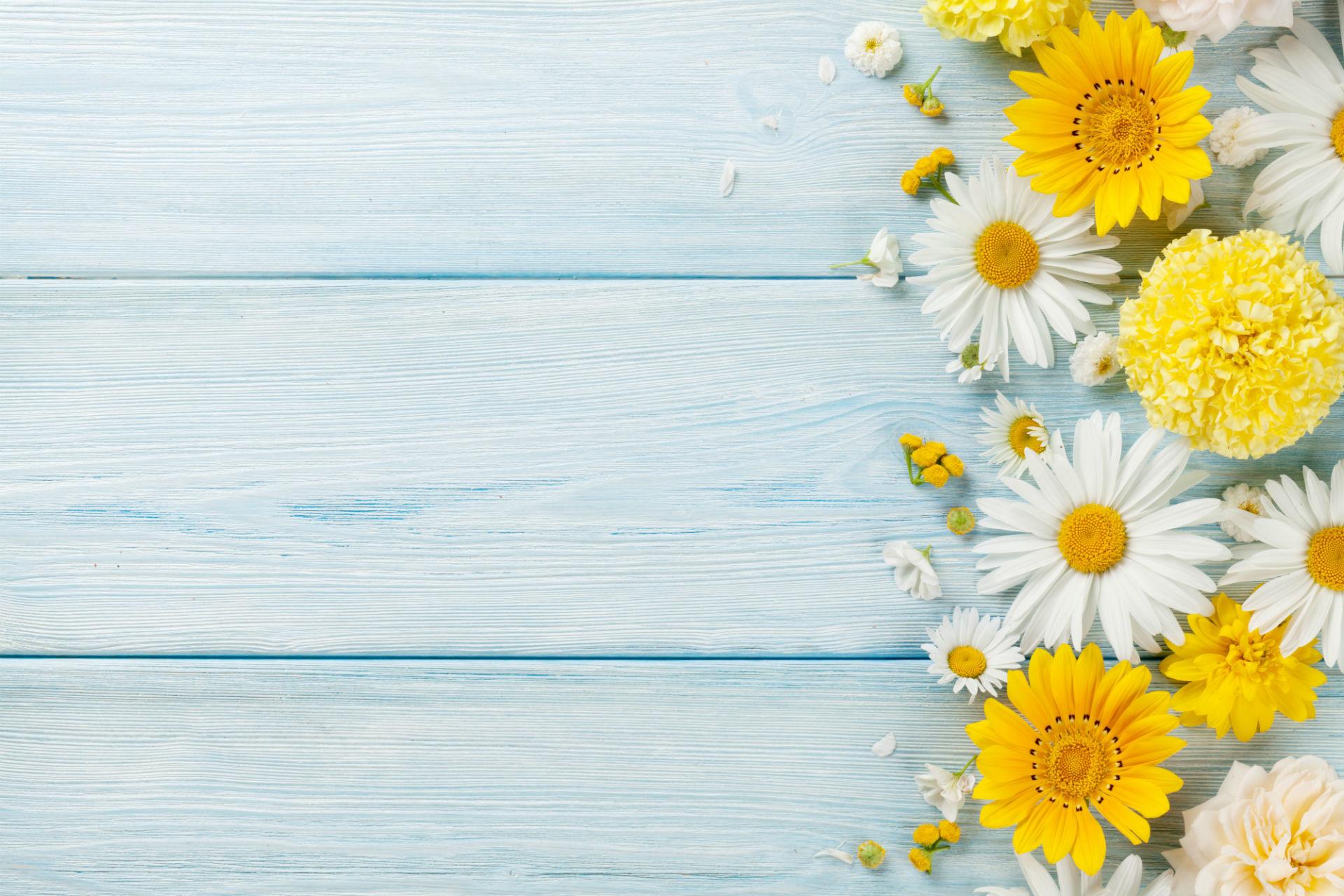 Background hoa lá đẹp cho powerpoint
